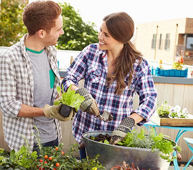 Лучшие садовые инструменты
